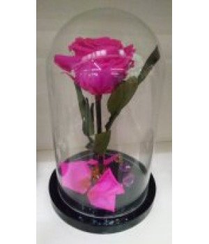 Роза в колбе ярко-розовая