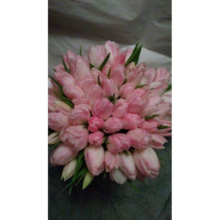 Букет 55 розовых тюльпанов