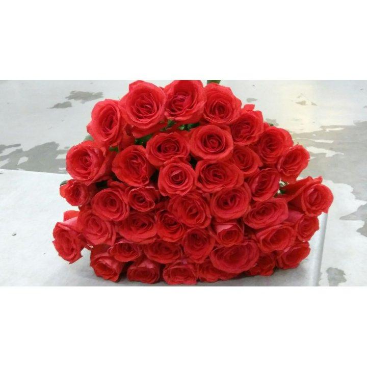 Букет 39 роз России