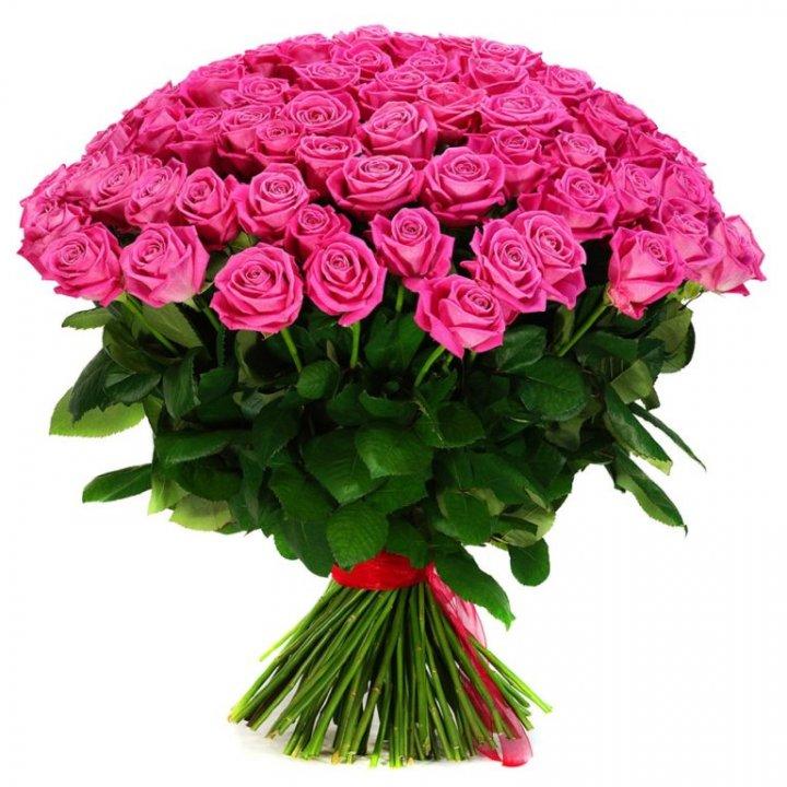 Букет из 55 роз