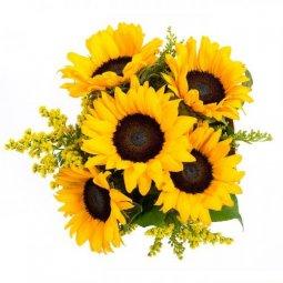 Разные цветы, экзотика