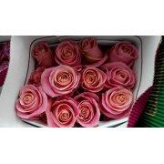 Роза Эквадор 3